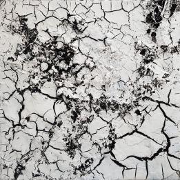 WHITE CRUST / Abstrait matiériste. Technique mixte huile - Toile sur châssis 3D (épaisseur environ 4 cm) / 50 X 50 / 500 €